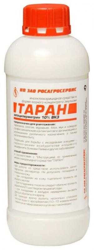 Таран